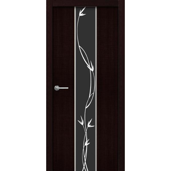 Дверь Кортекс-Z2 черное (CORTEX-Z2 черное)